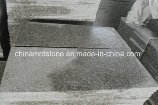 Popular G664 Granite Flamed Floor Tile / Outdoor Paving Tile