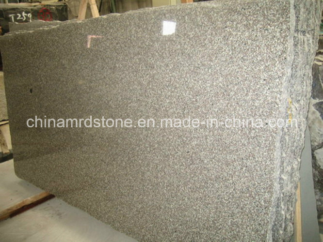 Cheap Rough Cut G664 Natural Granite Stone Slab