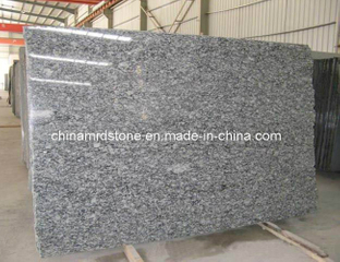 Precut Spray White Granite Gangsaw Size Slab for Middle East