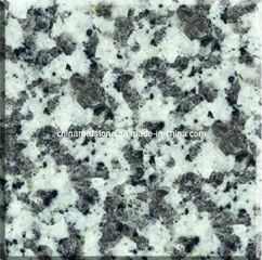 G439 Rosa Blue China Granite